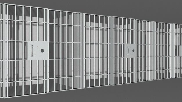 prison picc.jpg
