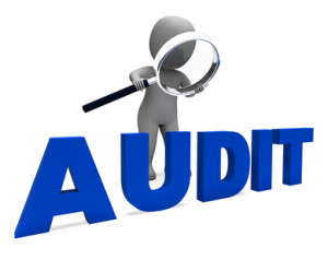 Audit Character Meaning Validation Auditor Or Scrutiny