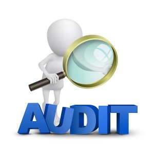 What Causes an IRS Tax Audit?